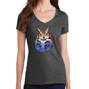 Colorful Owl - Ladies V-Neck T