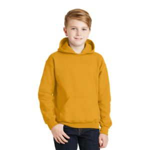 Youth Heavy Blend Hooded Sweatshirt Thumbnail