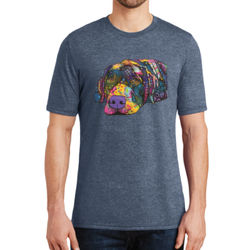 Colorful Lab - Adult Soft Tri-Blend T Thumbnail