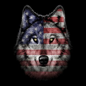 American Wolf