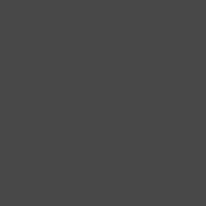 Floral Lion (Gold Metallic)  - Unisex Favorite 50/50 Blend T-Shirt Design