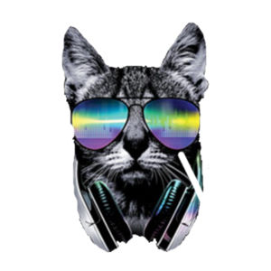 DJ Cat - Adult Soft Tri-Blend T Design
