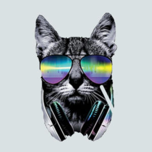 DJ Cat - Juniors V-Neck T Design