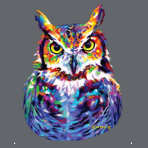 Colorful Owl - Adult 50/50 Blend Hoodie Design
