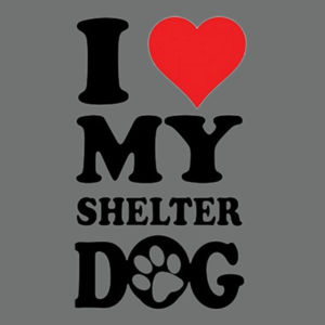 Love Shelter Dogs - Adult Soft Tri-Blend T Design