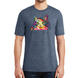 Colorful Cat - Adult Soft Tri-Blend T Thumbnail