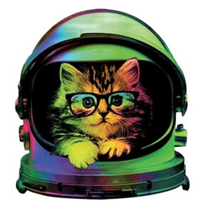 Space Kitty Thumbnail