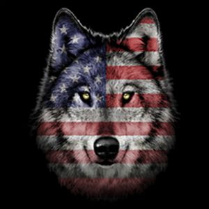 American Wolf Thumbnail