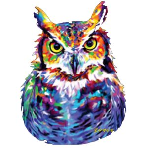 Colorful Owl Thumbnail